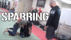 Sparring(1)